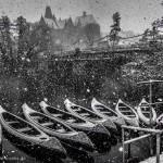 Alte Uni im Schneesturm
