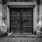 Hund vor Kirchentür