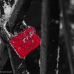 Gefrorene Liebe