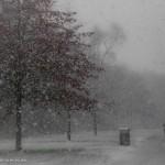 Lahnwiese im Schnee