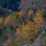 Sportler in Herbstlandschaft